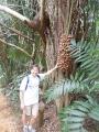 belize-jungle-25