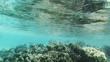 Belize-San_Pedro-16