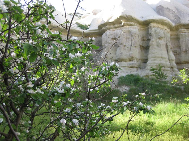 cappadocia-026