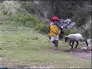 cuzco-30
