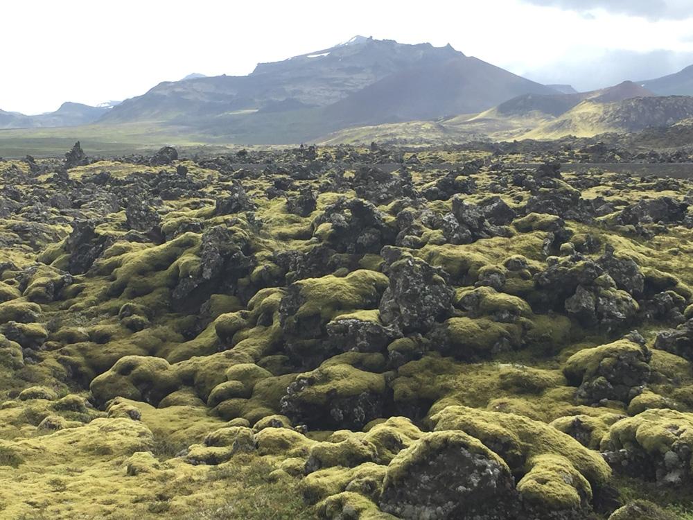 Iceland-Land- (205)