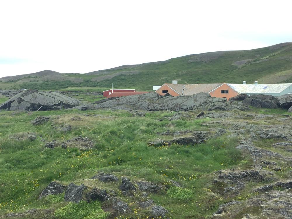 Iceland-Land- (86)