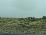 Iceland-Land- (40)