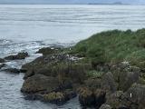 Iceland_Sea (163)