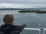 Iceland_Sea (168)