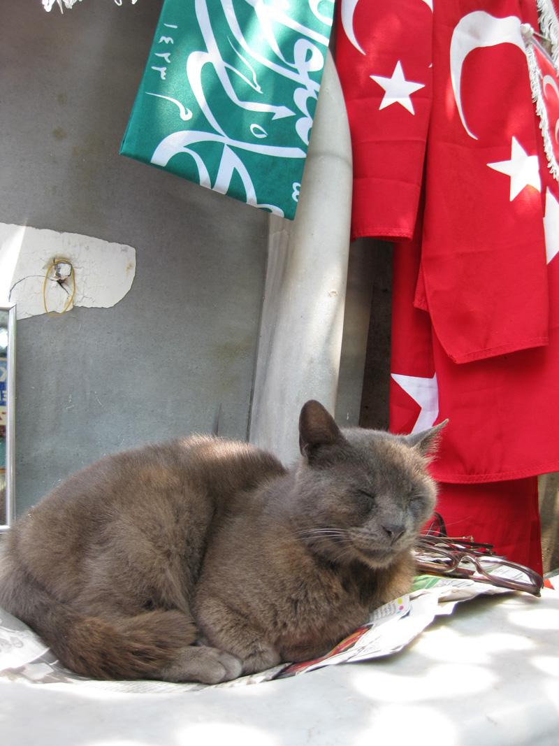 istanbul-turkey-181
