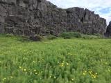 Iceland-Waterfalls-06