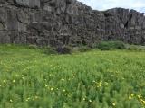 Iceland-Waterfalls-08