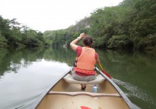 Belize – The Jungle